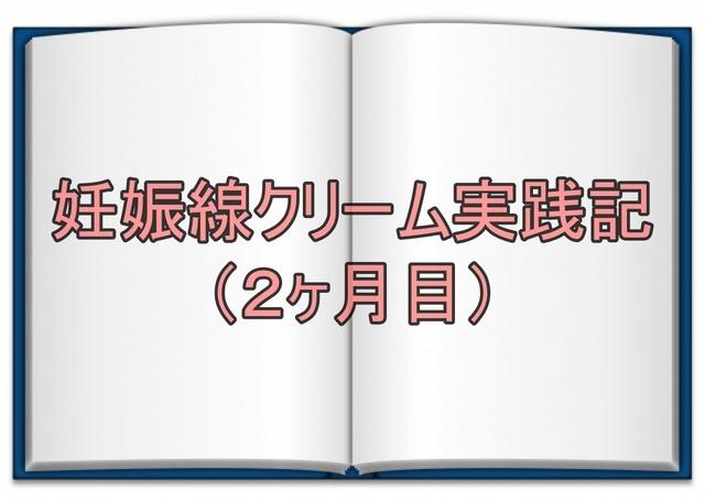 実践記2か月アイキャッチ.jpg
