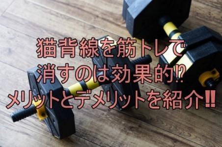 筋トレ、メリット・デメリット.jpg